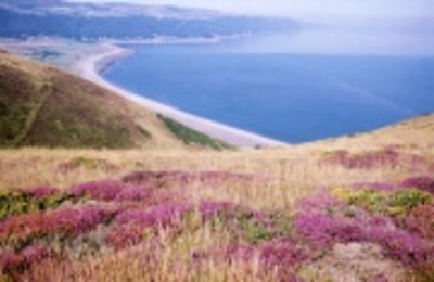 Gallery_view_of_porlock_bay_from_ex